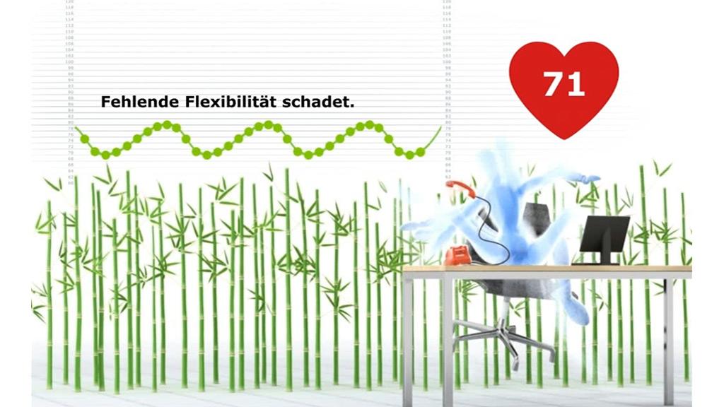 CAT PRODUCTION GmbH - Biocomfort SP